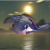 синяя птица удачи :: linnud