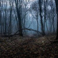 тишина :: Иван Белашов