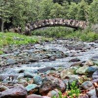Рицинский национальный парк. Территория дачи И.В. Сталина :: Natalia Furina