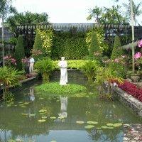 Таиланд :: Антонина