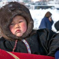 Маленький житель тундры :: Фёдор Воронов
