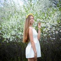 весна.... :: Svetlana SSD Zhelezkina