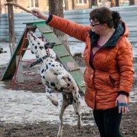 Дама с собачкой :: Albina