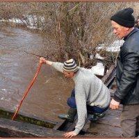 Петрович, кажись утопленник.. Толкай его багром дальше, проходу воды мешает!))) :: Андрей Заломленков