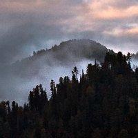 Там за туманами :: Ольга Фролова