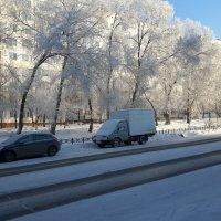Зимний день. :: Глен Ленкин