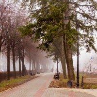 Туман утром.. :: Юрий Стародубцев