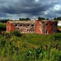 старый бастион Бобруйской крепости :: Александр Прокудин
