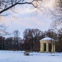 Февраль в парке, замерзший пруд :: Елена Кириллова