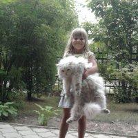 Этот котик бегемотик :: Александра Полякова-Костова