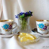 Апрельское утро с фиалками... :: Тамара (st.tamara)
