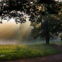 Раннее утро. Павловск. С-Петербург. :: Александр Истомин
