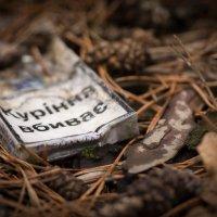 Курение убивает лес :: Виталий Шарипов