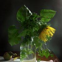 Желтый цветочек :: Карачкова Татьяна