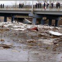 Лёд тронулся, господа присяжные заседатели... :: Андрей Заломленков