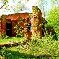 Руины Баболовского дворца :: Сергей