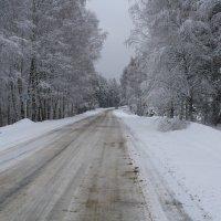 дорога в апреле :: Андрей Дружинин