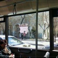 Одиночество в автобусе :: maxim
