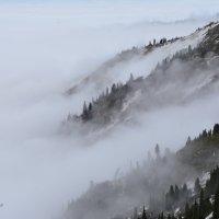 Туман нежно обволакивал горы. :: Anna Gornostayeva