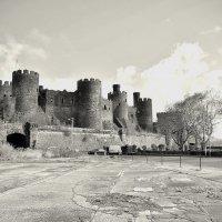 Conwy castle :: SvetlanaScott .
