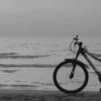Край моря. :: Andrey Nemo