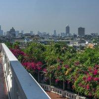 Вторая неделя. Фото 4. Таиланд. Бангкок :: Владимир Шибинский