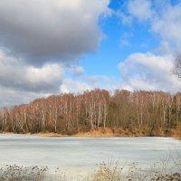 На озёрах ещё лед :: Милешкин Владимир Алексеевич