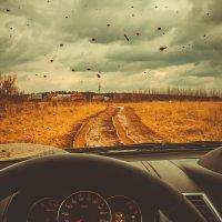 Весенняя дорога :: Дмитрий Долгов