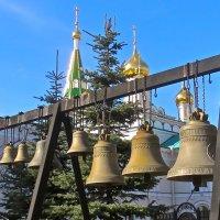 колокольня Новодевичьего монастыря :: Елена