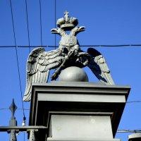 деталь ограды Московских ворот :: Сергей
