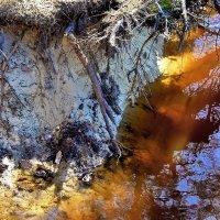 Подмывает берег талая вода... :: Лесо-Вед (Баранов)