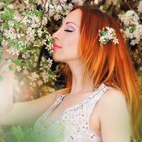 Весна... :: Юлия Журавлёва