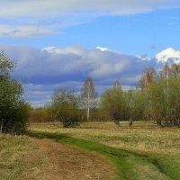 Весенний пейзаж. :: nadyasilyuk Вознюк