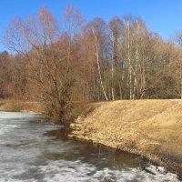 Репортаж прямо со льда :: Андрей Лукьянов
