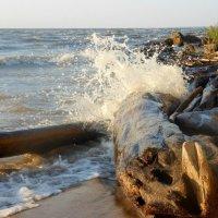 Разбивающаяся волна :: Ирина Лебедь