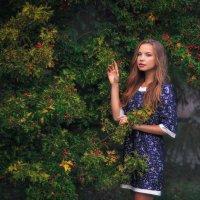 В ботаническом саду после дождя. :: Дмитрий Чурсин