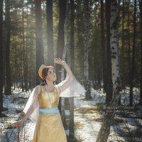 Волшебный лес :: Светлана Нощик