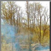 весна. лес. река. :: Ivana
