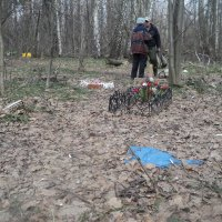 Кладбище животных с настоящими памятниками в Подмосковном городе Дзержинский сегодня 6 апреля 2016 г :: Ольга Кривых