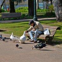 Завтрак :: Олег Потехин