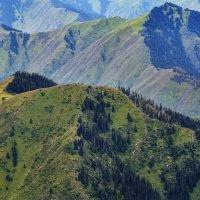 горы с горами :: Горный турист Иван Иванов