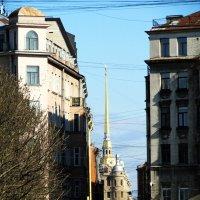 вертикали петроградской стороны :: georg