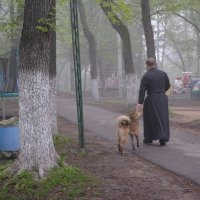 Утро туманное :: Ирина Бархатова