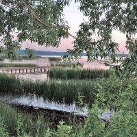 Вечер на Плещеевом озере :: елена ферштут