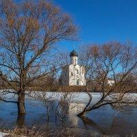 утренние заморозки :: Сергей Цветков