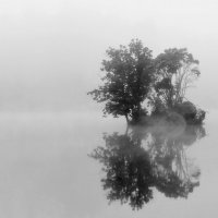 Занавесил вуалью туман островок :: Валентина Данилова