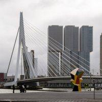 Мост Эразма, Роттердам :: Witalij Loewin