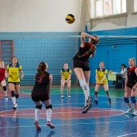 Волейбол 5 :: Валентин Кузьмин