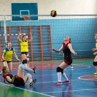 Волейбол :: Валентин Кузьмин
