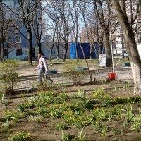 Весна!.. :: Нина Корешкова